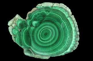 Malachite - Fossils For Sale - #94470