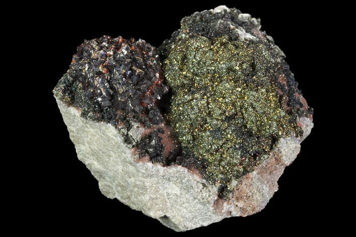 "2.1"" Sphalerite ""Flower"" With Marcasite and Quartz - Missouri"