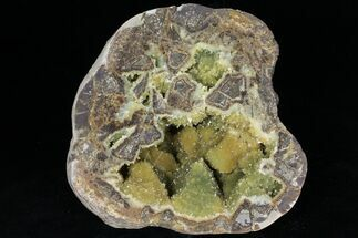 "8.1"" Yellow Crystal Filled Septarian Geode - Utah For Sale, #97244"