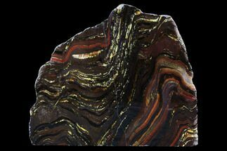 Tiger Iron Stromatolite - Fossils For Sale - #96225