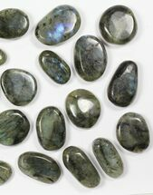 Labradorite - Fossils For Sale - #90546