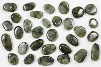 Labradorite - Fossils For Sale - #90624