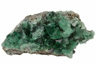 Fluorite  - Fossils For Sale - #97884
