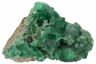 Fluorite  - Fossils For Sale - #97887