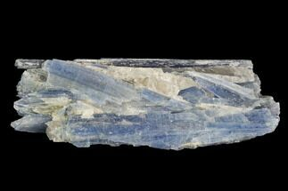 Kyanite & Quartz - Fossils For Sale - #97956