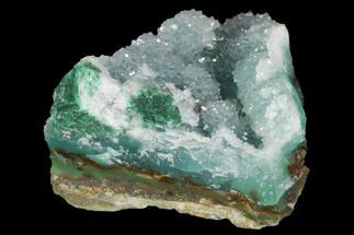 "1.4"" Atacamite & Quartz on Silica Chrysocolla Chalcedony - Peru For Sale, #98177"