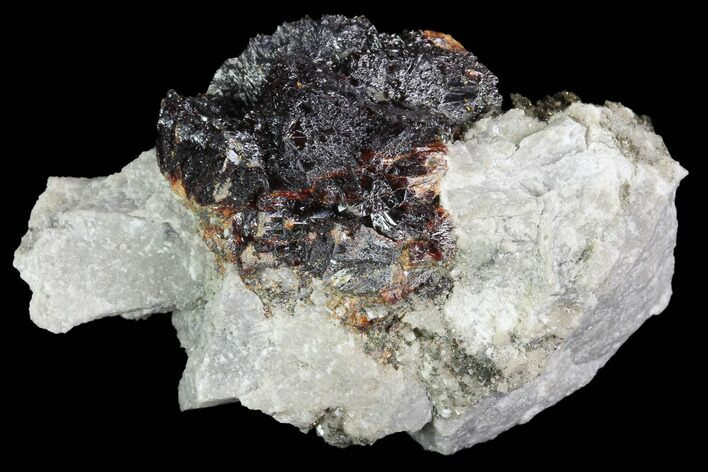 "2"" Sphalerite ""Flower"", Marcasite and Quartz Association - Missouri"