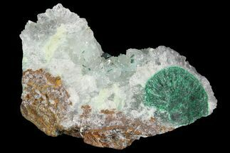 "Buy 2.3"" Atacamite & Quartz Crystal Association - Peru - #98164"