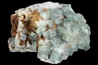 "Buy 3.8"" Blue-Green, Cubic Fluorite Crystal Cluster - Morocco - #99004"