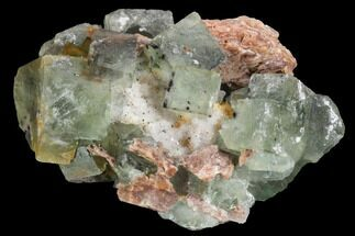 "4.1"" Blue-Green, Cubic Fluorite Crystal Cluster - Morocco For Sale, #99008"