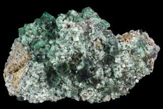 "4.9"" Fluorite Crystal Cluster -  Rogerley Mine For Sale, #99452"