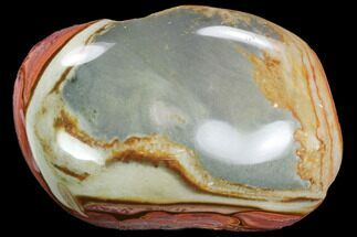 Polychrome Jasper - Fossils For Sale - #99633