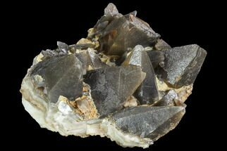 Calcite - Fossils For Sale - #99669