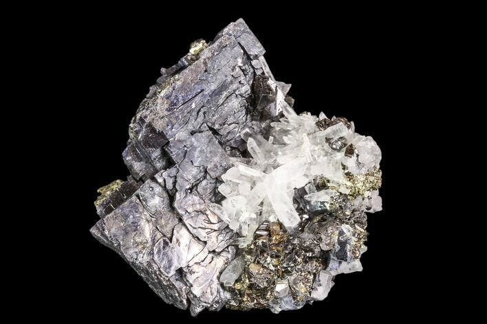 "1.8"" Pyrite, Galena, Sphalerite and Quartz Association - Peru"