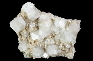 "Buy 3.5"" Plate of Zoned Apophyllite Crystals on Micro-Stilbite - India - #100153"