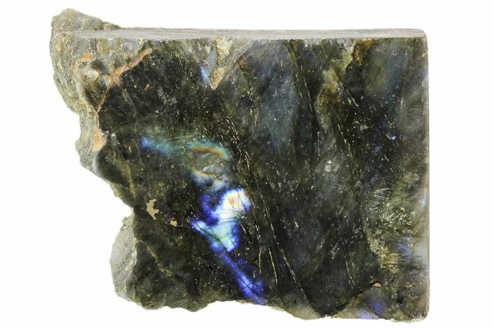 "2.9"" Tall, Single Side Polished Labradorite - Madagascar"