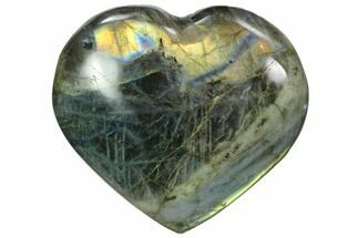 Labradorite - Fossils For Sale - #58890