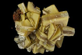 "Buy .75"" ""Sandwich"" Wulfenite Crystal Cluster - Ojuela Mine, Mexico - #103465"