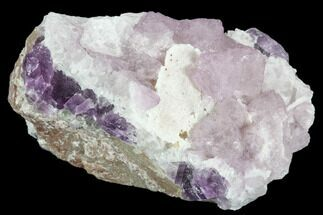 Fluorite, Quartz & Calcite - Fossils For Sale - #103560