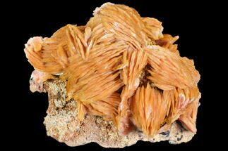 Barite & Galena - Fossils For Sale - #103698
