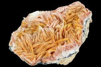 "3.6"" Pink and Orange Bladed Barite - Mibladen, Morocco For Sale, #103727"