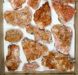 Wholesale Lot - Pink and Orange Bladed Barite - 19 Pieces - #103745-1