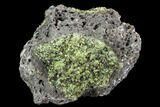 "4.4"" Peridot in Basalt - Arizona - #104020-1"