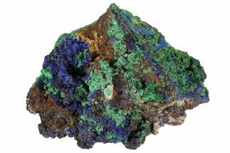 "1.7"" Sparkling Azurite and Malachite Crystal Cluster - Morocco For Sale, #104372"