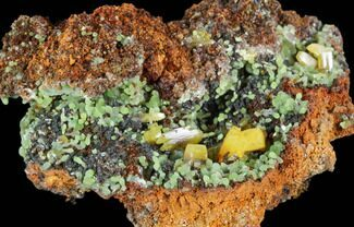 Wulfenite & Mimetite - Fossils For Sale - #103518