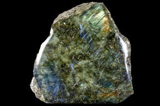 "Buy 12.1"" Wide, Polished Labradorite Section (37 lbs) - Madagascar - #103726"