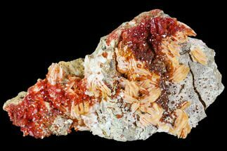 Vanadinite with Barite - Fossils For Sale - #104745