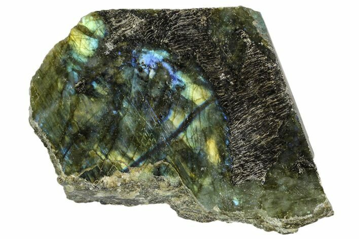 "3.5"" Wide, Single Side Polished Labradorite - Madagascar"