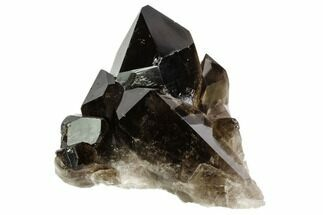 "Buy 3.5"" Dark Smoky Quartz Crystal Cluster - Brazil - #106969"
