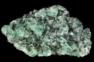 Fluorite  - Fossils For Sale - #106104