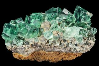 Fluorite  - Fossils For Sale - #106107
