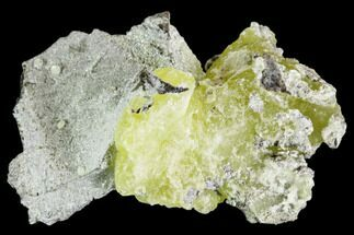 "Buy 2.1"" Lemon-Yellow Brucite - Balochistan, Pakistan - #108025"