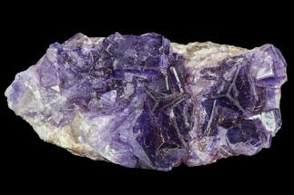 Fluorite - Fossils For Sale - #108711