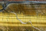 "7.8"" Polished Tiger's Eye Slab - South Africa - #109285-1"