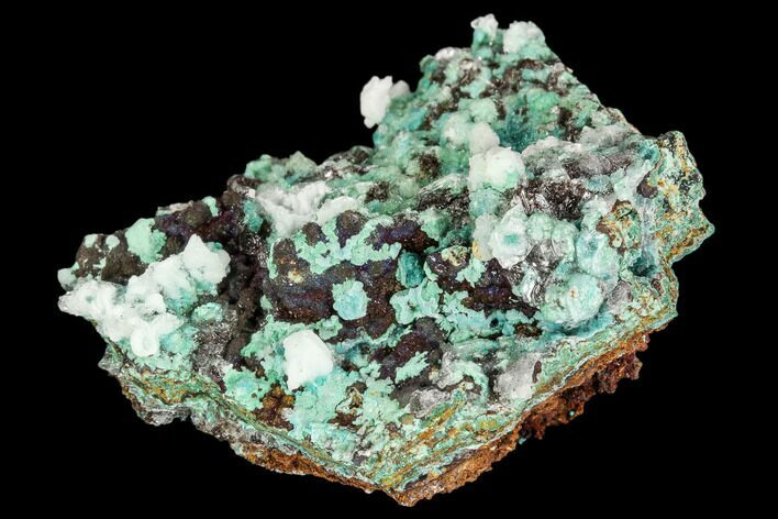 "1.9"" Rosasite, Aurichalcite and Selenite Crystal Association - Utah"