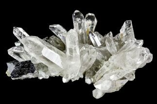 "1.5"" Anatase Crystal and Quartz Association - Norway For Sale, #111422"