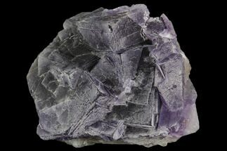 "Buy 2.6"" Purple, Cubic Fluorite Crystal Cluster - Pakistan - #112084"