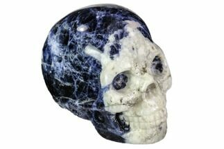 "Buy 1.9"" Polished Sodalite Skull - Brazil - #112186"