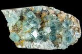 "6.3"" Plate Of Green Fluorite Crystals on Quartz - China - #112188-1"