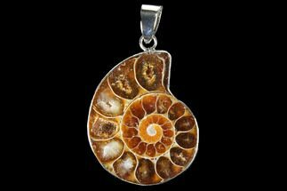 "1.2"" Fossil Ammonite Pendant - 110 Million Years Old For Sale, #112427"