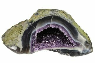 "Buy 7.2"" Purple Amethyst Geode with Polished Face - Uruguay - #113842"