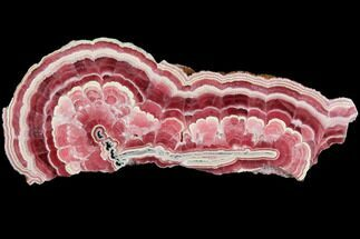 Rhodochrosite  - Fossils For Sale - #114243