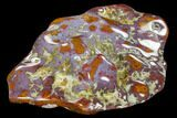 "9.5"" Wide, Polished Cathedral Agate - Gorgeous Purple Bands - #114381-2"