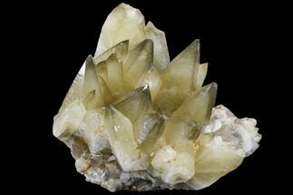 Calcite - Fossils For Sale - #115203