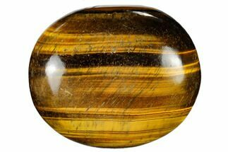 "Buy 2.5"" Polished Tiger's Eye Palm Stone - South Africa - #115549"