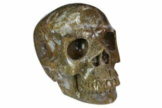 "6.35"" Realistic, Polished Moss Agate Skull  For Sale, #116519"